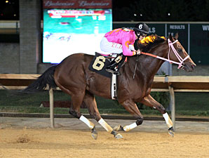 Immortal Eyes wins the 2013 Jefferson County Commission Stakes.