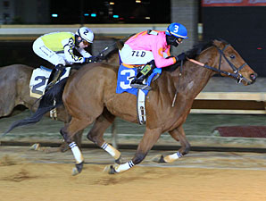 Immortal Eyes wins the 2013 Valentine's Day Handicap.