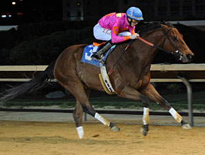 Immortal Eyes wins the 2012 Webb Snyder Stakes