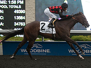 Imperial Dream wins the 2014 Vandal Stakes.