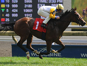 Impossible Time wins the 2010 Victoriana.