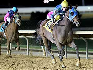 In the Fairway wins the 2014 Confucius Say Stakes.