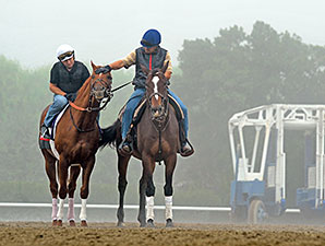 Indy Point preps for the Breeders' Cup.