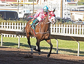 Indy's Rocket wins the 2014 University Of New Mexico Handicap.