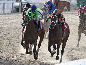Infrattini wins the 2013 Louisiana Handicap.