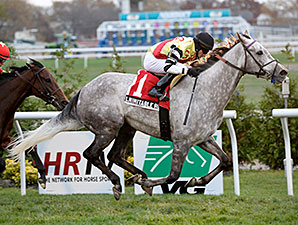 Inimitable Romanee wins the 2013 Long Island.