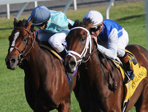 Interactif wins the 2009 Bourbon.