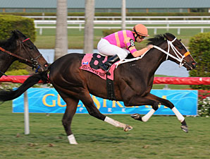 In the Rough wins the 2010 Coconut Grove.