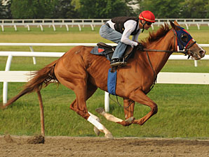 Irish Mission - Woodbine, June 21, 2012.