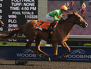 It's Gail wins the 2012 Eternal Search Stakes.