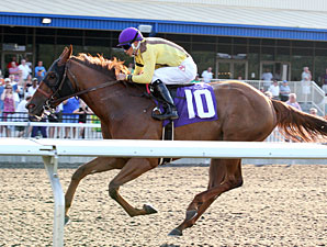 It's Me Mom wins the 2012 Satin and Lace Stakes.