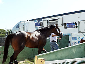 Itsmyluckyday leaves Calder for Churchill Downs on April 26, 2013.