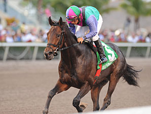 Itsmyluckyday wins the 2012 Gulfstream Park Derby.