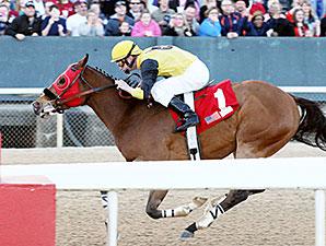 Ivan Fallunovalot wins the 2015 King Cotton Stakes.