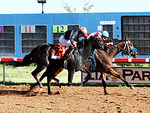 Ize in Trouble wins the 2013 Chaves County Stakes.