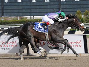J J's Lucky Train wins the 2011 Bay Shore.