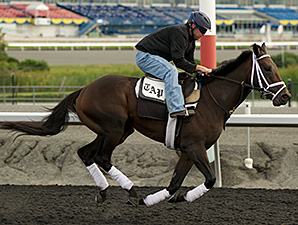 Jack Milton - Woodbine, September 12, 2014.