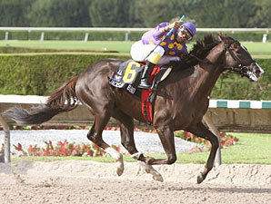 Jackson Bend wins the In Reality Division of the Florida Stallion Stakes.