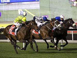 Jakkalberry wins the 2013 Dubai City of Gold.