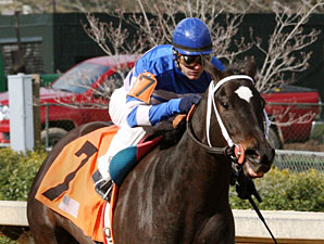 Jan's Perfect Start wins the Arkansas Breeders' Stakes.