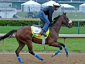Java's War preps for the Kentucky Derby at Churchill Downs.