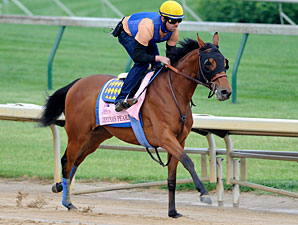 Jemima's Pearl - Churchill Downs April 29, 2012.