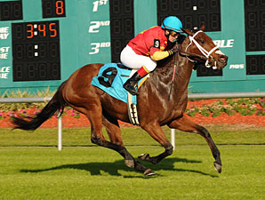 Jenny's So Great wins the 2011 Lightning City Stakes.