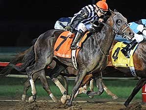 Jessica's Star wins the 2014 Prairie Mile Stakes.