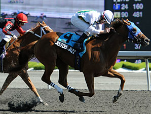 Jesters Jazz wins the 2010 Lady Angela.