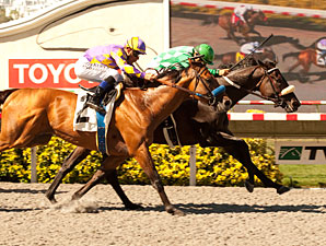 John Scott wins the 2012 Harry F. Brubaker Stakes.