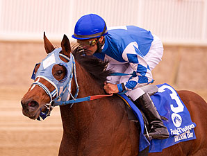 Jonesin for Jerry wins the 2013 Maryland Million Lassie.
