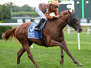 Joy wins the 2014 Perfect Sting Stakes.