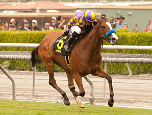 Jubliant Girl wins the 2013 Runway Stakes.
