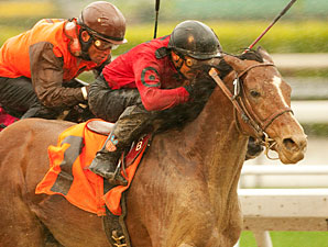Juniper Pass wins the 2011 San Luis Rey Stakes.