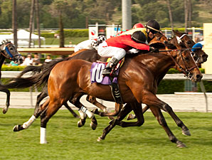 Juniper Pass wins the 2011 San Juan Capistrano.