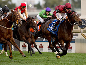 Just the Judge wins the E.P. Taylor Stakes.