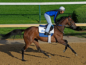 Kathmanblu - Churchill Downs 04/28/11.