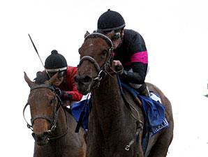 Kathmanblu wins the 2011 Rachel Alexandra.