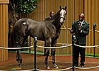 Keeneland September - Hip 110 Sale Ring Bidding