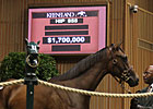 Keeneland September: Hip 855 in the Sale Ring