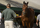 Keeneland September 2013 Preview