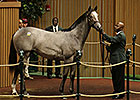 Keeneland Sept Yearling Sale: Hip 593 in the Ring