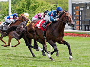 Keep Up wins the 2013 Swoon's Son Stakes.