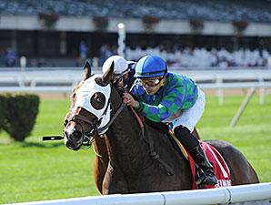 Kharafa wins the 2014 Mohawk Stakes.