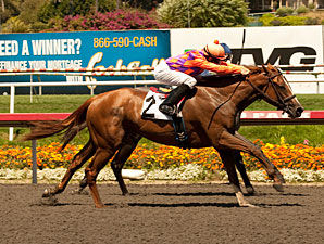 Killer Graces wins the 2011 Landaluce.