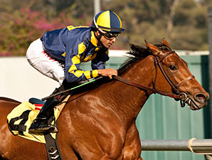 Kindle wins the 2012 Cool Air Stakes.