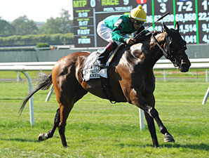 King Kreesa wins the 2013 Kingston Stakes.