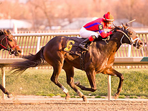 King and Crusader wins the 2011 Maryland Juvenile Championship.