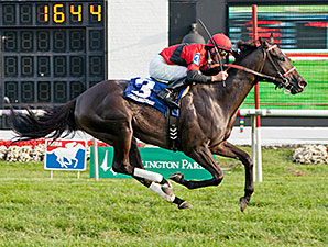 Kiss Moon wins 2014 Hatoof Stakes.