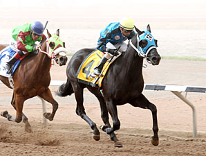 Kiss My Hennessy wins the 2012 Copper Top Futurity.
